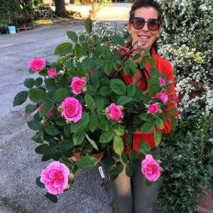 rose in fiore con Maria Vittori